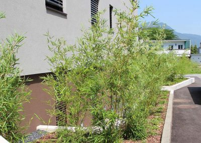 potatura piante ticino